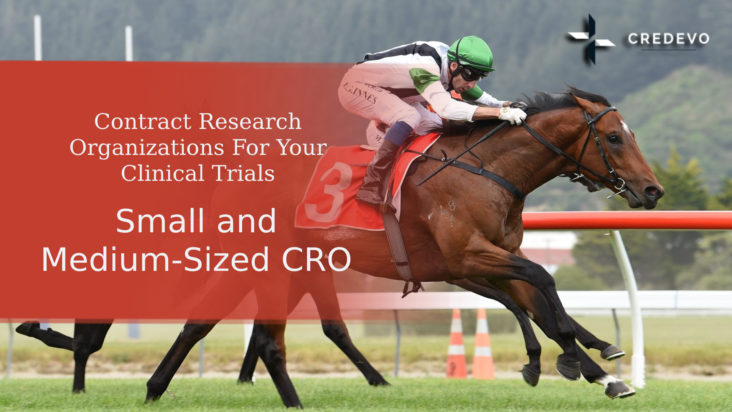 Small and Mid-Sized CRO For Your Clinical Trials